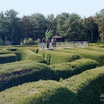 Labyrinthe de Gimnyeong